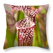 Plant - Pretty As A Pitcher Plant Throw Pillow