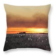 Plant Rd Lacassine Nwr Louisiana Throw Pillow