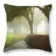 Plantation Canal Throw Pillow