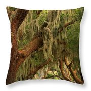 Plantation Oak Trees Throw Pillow