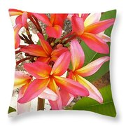 Plantation Plumeria Throw Pillow
