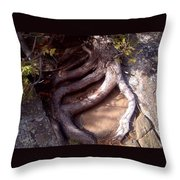 Planted On The Rock Throw Pillow