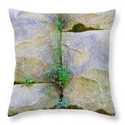 Plants In The Brick Wall Throw Pillow