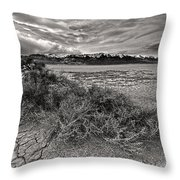 Plants On The Alvord Desert Throw Pillow