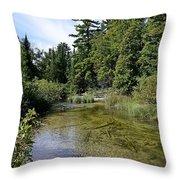 Platte River Beauty Throw Pillow