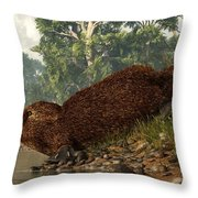 Platypus On The Shore Throw Pillow
