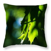 Play Of Light On Maple Leaves Throw Pillow