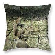 Green Monkey Play Time Throw Pillow
