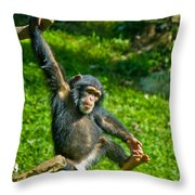 Playful Chimp Throw Pillow
