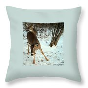 Playful In The Snow Throw Pillow