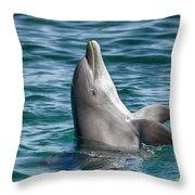 Playful V10 Throw Pillow