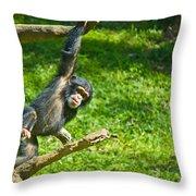 Playing Chimp Throw Pillow