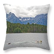 Playing In Colter Bay In Grand Teton National Park-wyoming Throw Pillow