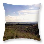 Playtime On The Farm. Throw Pillow
