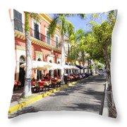 Plaza Machado Pulmonia Throw Pillow