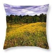 Pleasant Meadow Foreboding Sky Throw Pillow