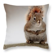 Please May I Have Some More? Throw Pillow