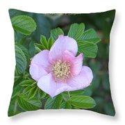 Pleasing Pink Throw Pillow
