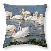Plenty Of Pelicans Throw Pillow