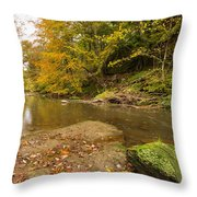 Plessey Woods And The River Blyth Throw Pillow