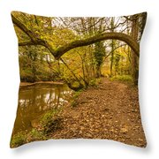 Plessey Woods Riverside Footpath Throw Pillow