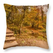 Plessey Woods Trail Over Footbridge Throw Pillow