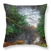 Plodda Burn Throw Pillow