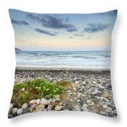 Plomo Beach Throw Pillow