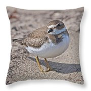 Plover Lover.. Throw Pillow
