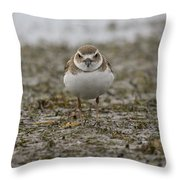 Plover Throw Pillow