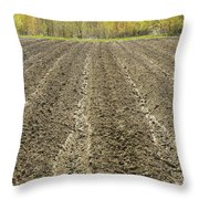 Plowed Spring Farmland Ready For Planting In Maine Throw Pillow