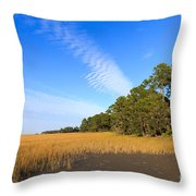 Pluff Mud And Salt Marsh At Hunting Island State Park Throw Pillow