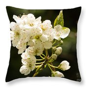 Plum Blossom Throw Pillow