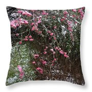 Plum Blossom In The Snow Throw Pillow
