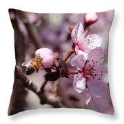 Plum Blossoms 12 Throw Pillow