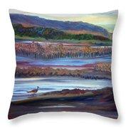 Plum Island Salt Marsh Sunset Throw Pillow
