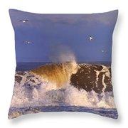 Plum Island Waves Throw Pillow