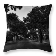 Plum Street To Franklin Square Throw Pillow