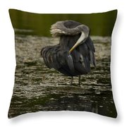 Plumage Perfection Throw Pillow