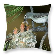 Plumbeous Vireo Feeding Worm To Chicks Throw Pillow