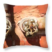 Plumbing And Mortar Throw Pillow by Douglas Barnett
