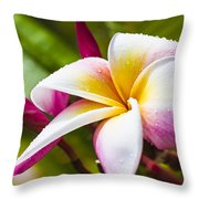 Plumeria 2 Throw Pillow
