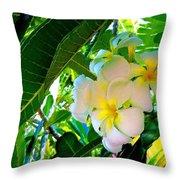 Plumeria Beauty Throw Pillow