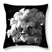 Plumeria Black White Throw Pillow
