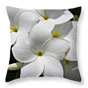 Plumeria Flowers Throw Pillow