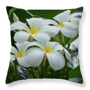 Plumeria In The Rain Throw Pillow