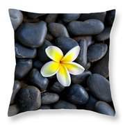 Plumeria Pebbles Throw Pillow