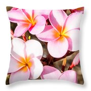 Plumerias Of Paradise 2 Throw Pillow