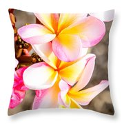 Plumerias Of Paradise 4 Throw Pillow