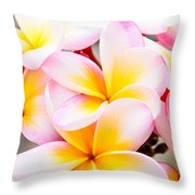 Plumerias Of Paradise 6 Throw Pillow